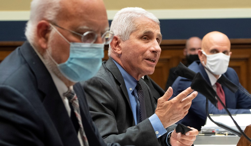 Fauci 'Cautiously Optimistic' Coronavirus Vaccine Will Be Available to Public by 2021