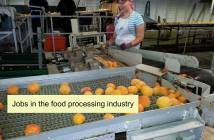 jobs_in_the_food_processing_industry