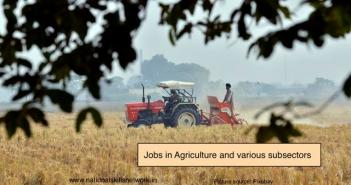 Jobs in Agriculture and various subsectors
