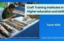 Craft training institutes in India - higher education and skills