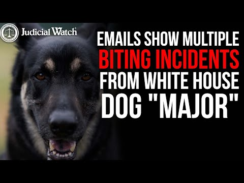 """Emails Show MULTIPLE Biting Incidents from WH Dog """"Major"""" — MORE TIMES than Biden WH Admitted!"""
