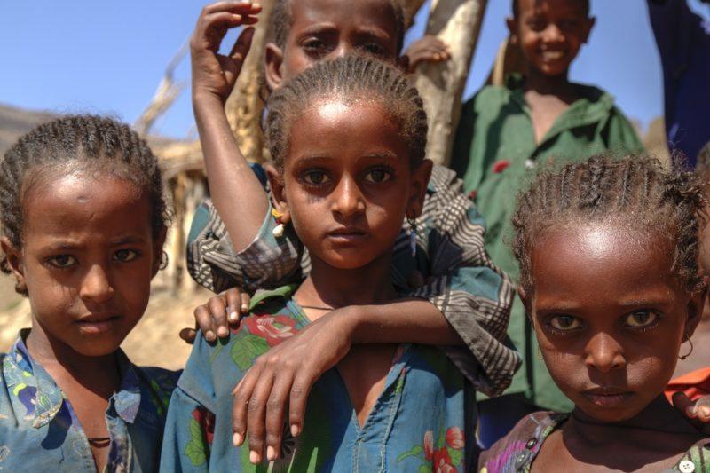 Ethiopia: Final days of the TPLF regime - NationofChange