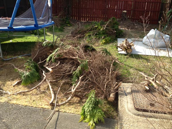Garden Waste Removal Newcastle