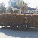 Pine Straw Installation