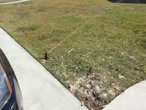 sprinkler system repairs savannah