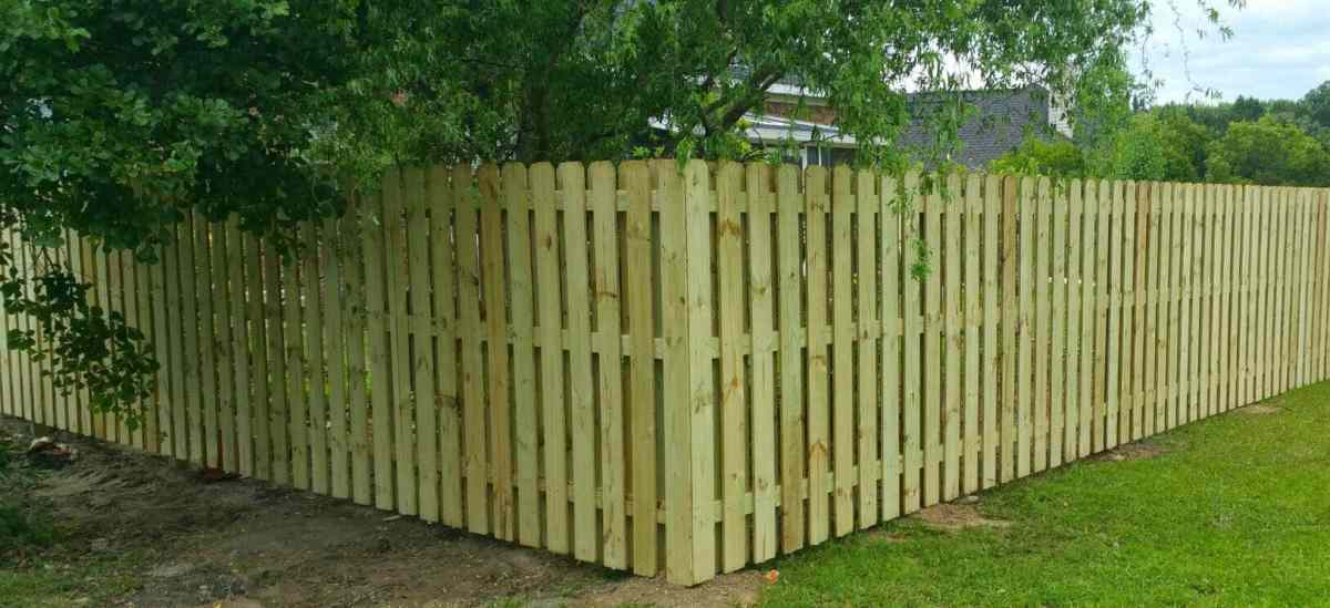 Pine Shadow Box Dog Ear Pressure Treated Wood Fence Panel