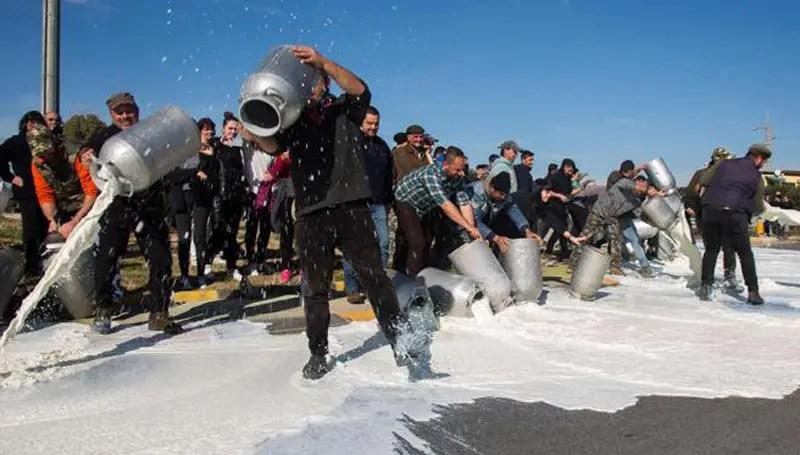 Protestano gli allevatori della Sardegna. Latte sparso per strada