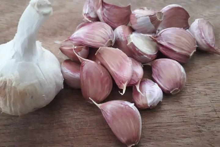 Coltiviamo l'aglio (Allium Sativum)
