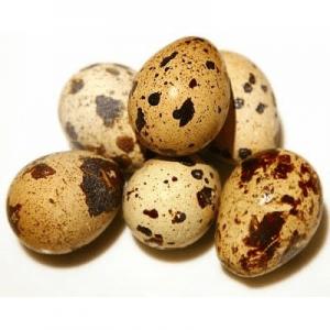 D'Artagnan Quail Eggs, 15 count