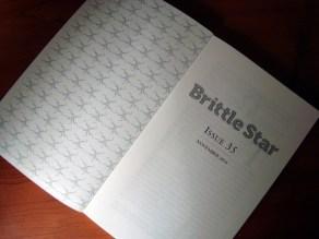 brittle-star-04