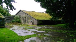 Abandoned chicken shed (on chicken farm)