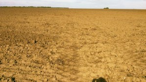 The ploughed field, it never ends