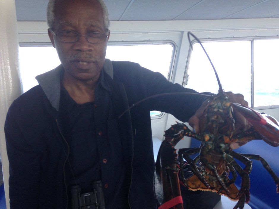 Dad holding a lobster