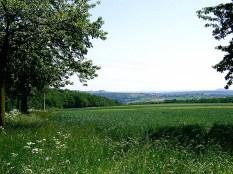 Osterzgebirge