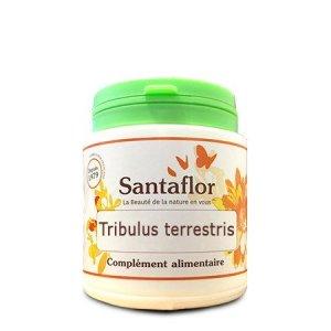 Tribulus terrestris gélules1000 gélules gélatine végétale