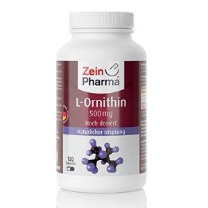 ZeinPharma L-Ornithine 500 mg • 120 gélules (alimentation pour 5 semaine) • Sans gluten, végétalien, kosher et halal • Fabriqué en Allemagne