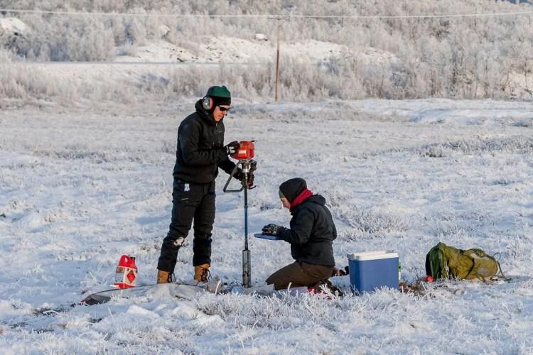 permafrost racines émissions carbone