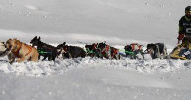 Cani da Slitta, Nutrimed e Maurizio Menghinella: tutto ai livelli più alti