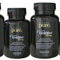 beyond-pure-glisodin-1