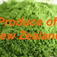 wheatgrass-new-zealand
