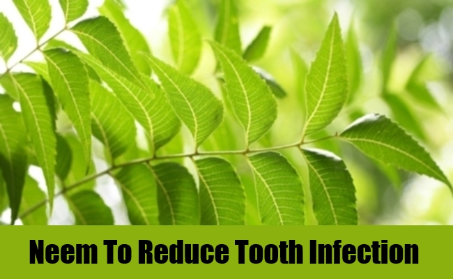 Neem To Reduce Tooth Infection