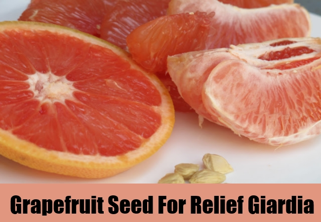 Grapefruit Seed For Relief Giardia