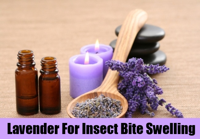Lavender For Insect Bite Swelling