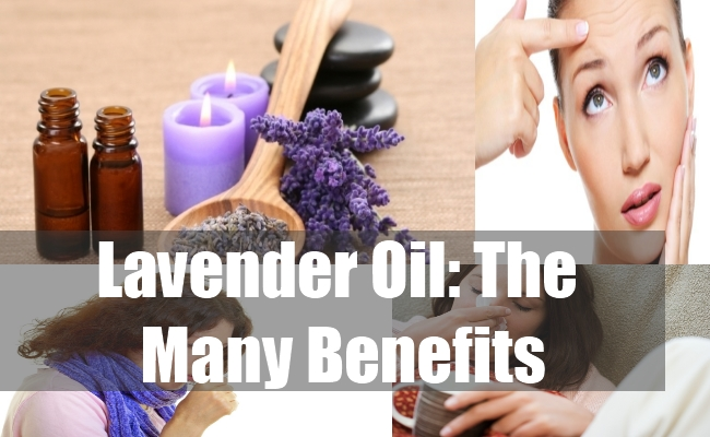 Lavender Oil The Many Benefits