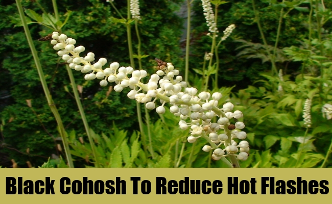 Black Cohosh To Reduce Hot Flashes