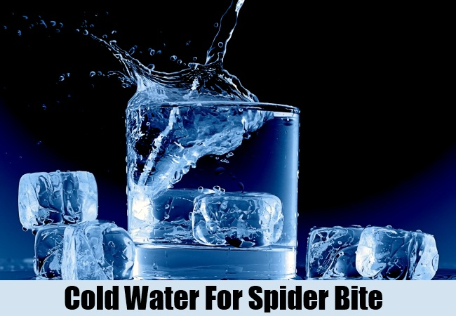 Cold Water For Spider Bite