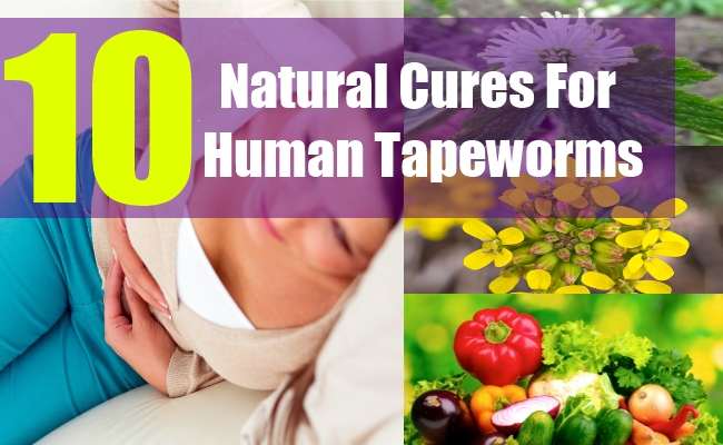 10 Natural Cures For Human Tapeworms