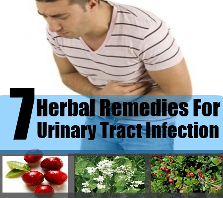 7 Herbal Remedies For Urinary Tract Infection