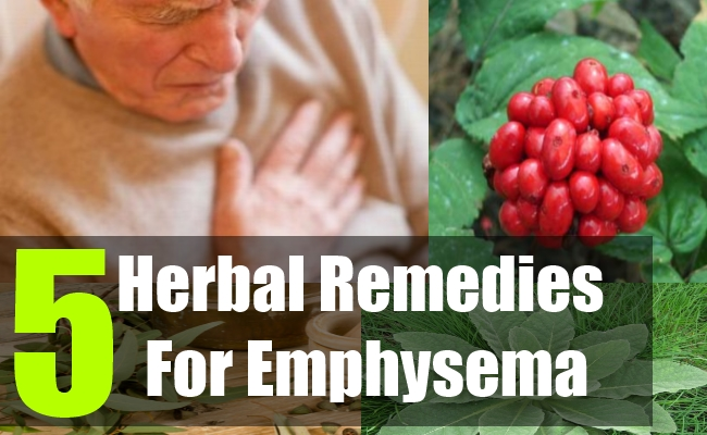 5 Herbal Remedies For Emphysema