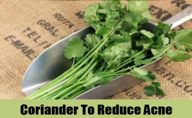 Coriander To Reduce Acne