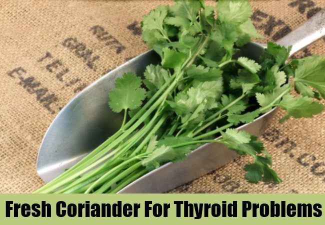 Fresh Coriander For Thyroid Problems