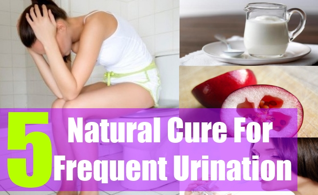 5 Natural Cure For Frequent Urination