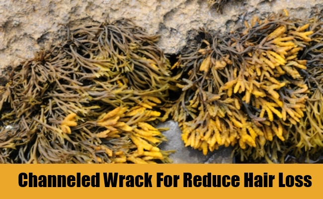 Channeled Wrack For Reduce Hair Loss