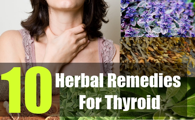 10 Herbal Remedies For Thyroid
