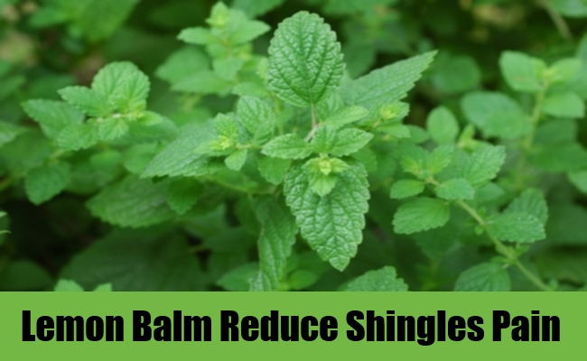 7 Herbal Remedies For Shingles Pain How To Use Herbs To