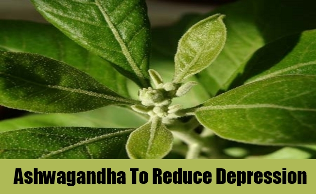 Ashwagandha To Reduce Depression
