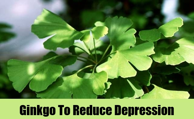 Ginkgo To Reduce Depression
