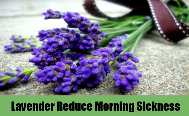 Lavender Reduce Morning Sickness