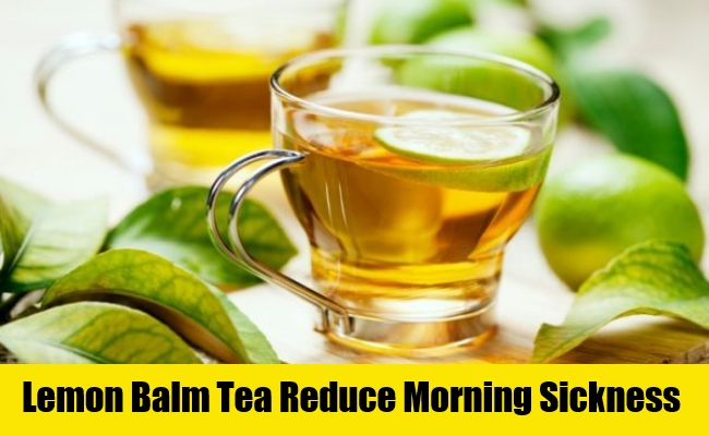 Lemon Balm Tea Reduce Morning Sickness