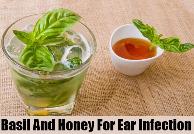 Basil And Honey For Ear Infection