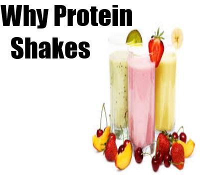 Protein Shakes
