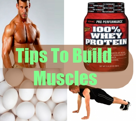 Tips To Build Muscles