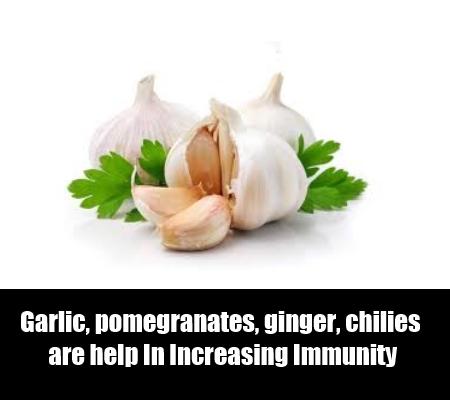 Foods That Help In Increasing Immunity