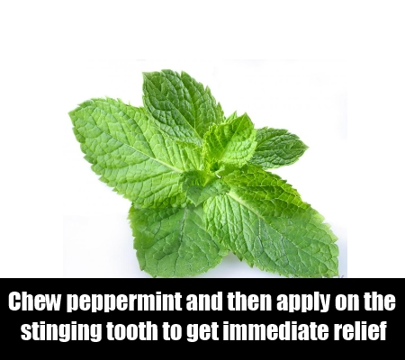 Peppermint Home Remedies For Toothaches