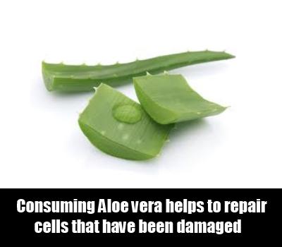 Use Aloe Vera