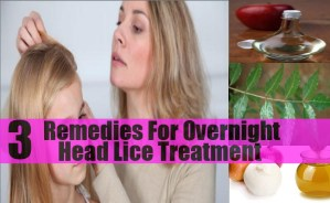 Remedies For Overnight Head Lice Treatment